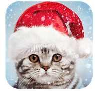 compartir fotos navidad
